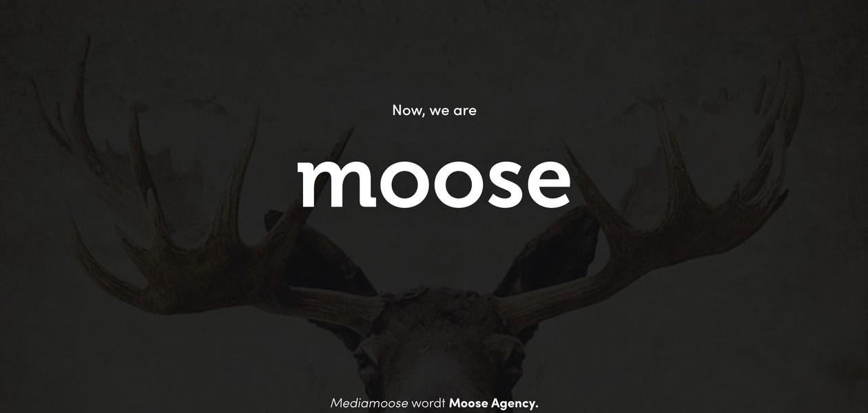 Mediamoose wordt Moose Agency
